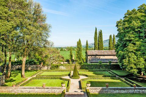 garden landscape green