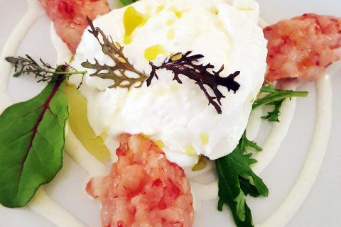 tartare food cuisine