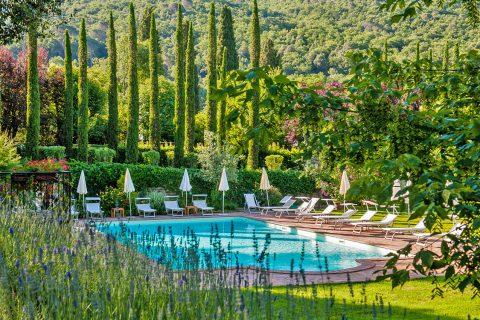 pool landscape green tree