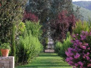 entrance garden colours