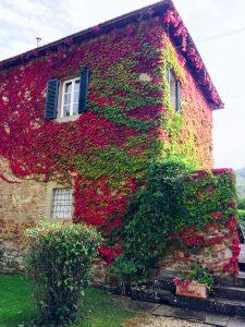 Autumn colours Garden view Villa di Piazzano SLH Luxury Hotel Cortona tuscany